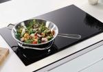 Dưới 10 triệu thì dùng bếp từ, bếp điện từ nào tốt?